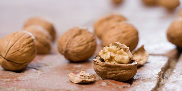 7reasons Why a Beauty Takes Walnut Nutrition Actively