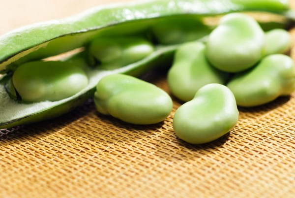 7 ways of taking in the fava beans nutrition for beauty