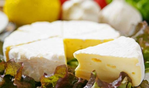 Cheese Nutrient Give you 7good Effect on the Health